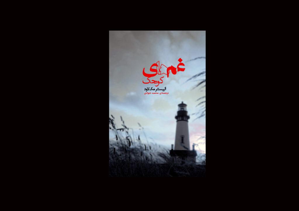 رمان «غم های کوچک»